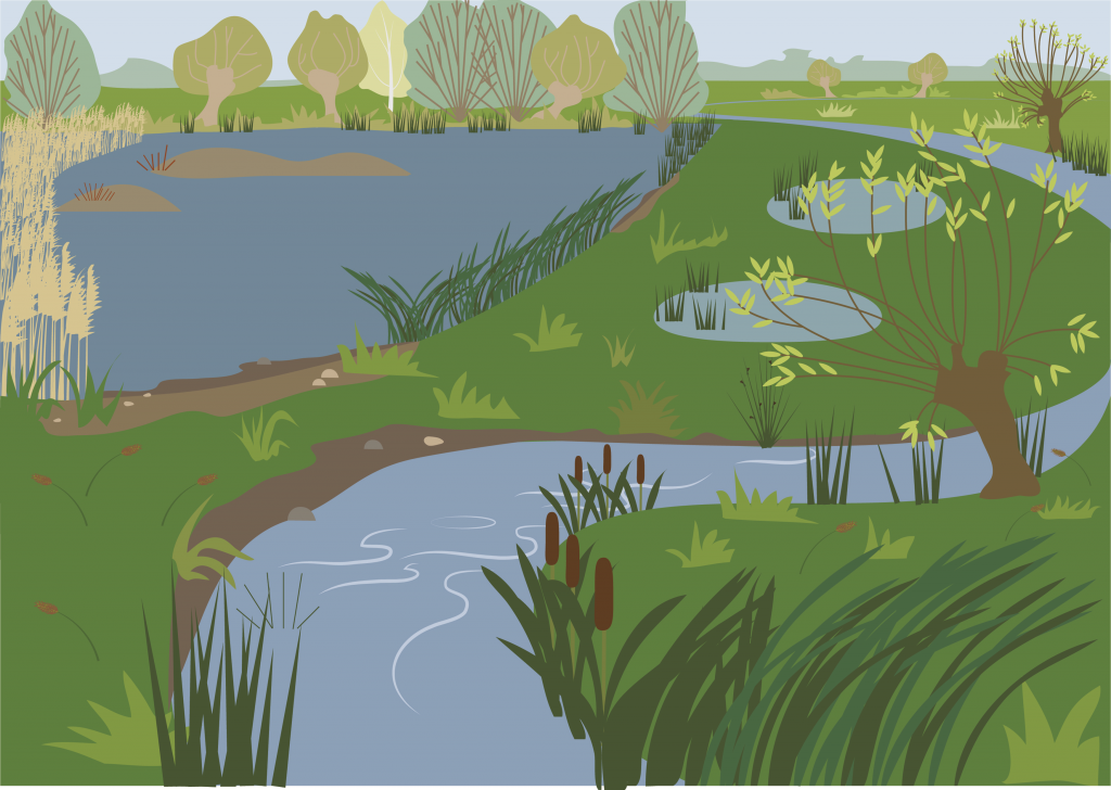 Lakes and Rivers  Illustration by Butterfly Tracks Publications