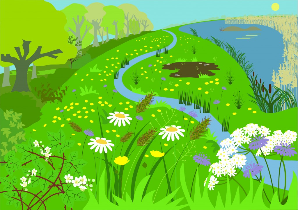 Summer Illustration by Butterfly Tracks Publications