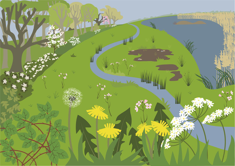 Spring Illustration by Butterfly Tracks Publications.